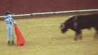 """A ONU insta a Colombia a afastar as crianças da """"violência das touradas"""""""