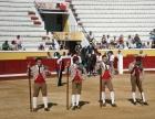 Touradas atingem mínimos históricos de corridas e de público em Portugal