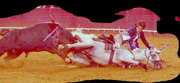 tourada portugal tauromaquia